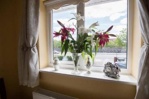 Leitrim Lodge Dublin Flowers on window